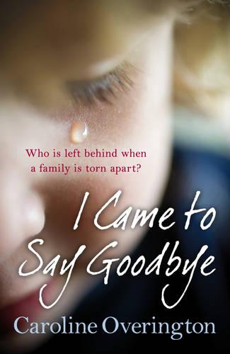 I Came to Say Goodbye (Paperback)