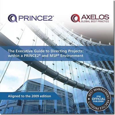 The executive guide to directing projects: within a PRINCE2 and MSP environment (Paperback)