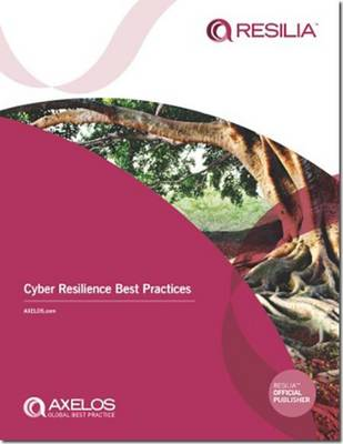 Cyber Resilience Best Practices (Paperback)