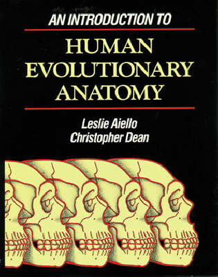 An Introduction to Human Evolutionary Anatomy (Paperback)