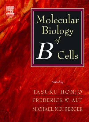 Molecular Biology of B Cells (Hardback)