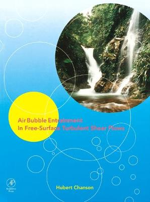 Air Bubble Entrainment in Free-Surface Turbulent Shear Flows (Hardback)