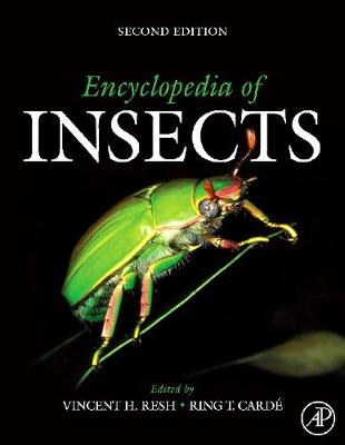 Encyclopedia of Insects (Hardback)