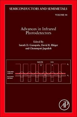 Advances in Infrared Photodetectors: Volume 84 - Semiconductors and Semimetals (Hardback)