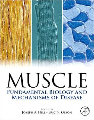Muscle 2-Volume Set: Fundamental Biology and Mechanisms of Disease