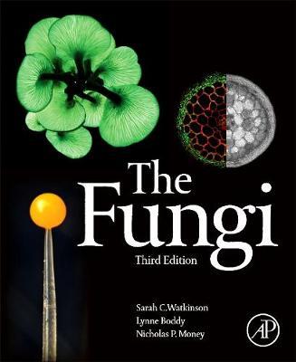 The Fungi (Paperback)
