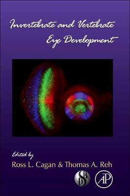 Invertebrate and Vertebrate Eye Development: Volume 93 - Current Topics in Developmental Biology (Hardback)