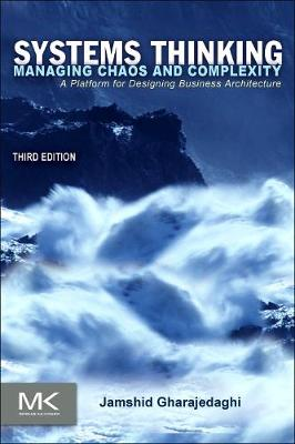 Systems Thinking: Managing Chaos and Complexity: A Platform for Designing Business Architecture (Paperback)