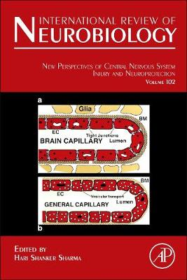 New Perspectives of Central Nervous System Injury and Neuroprotection: Volume 102 - International Review of Neurobiology (Hardback)