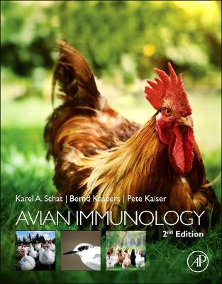Avian Immunology (Hardback)