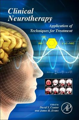 Clinical Neurotherapy: Application of Techniques for Treatment (Hardback)