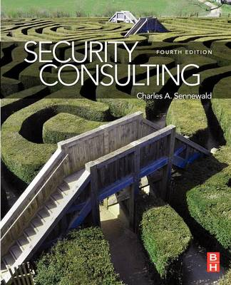 Security Consulting (Paperback)