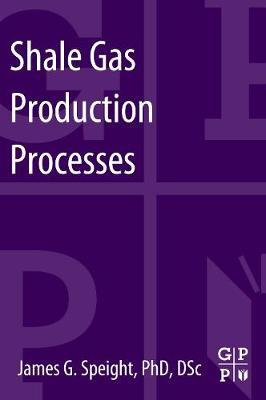 Shale Gas Production Processes (Paperback)