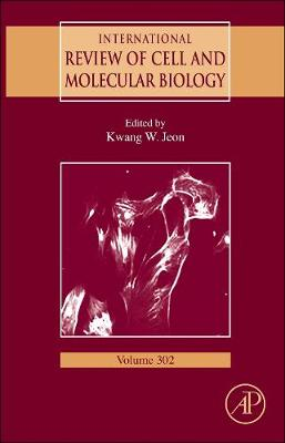 International Review of Cell and Molecular Biology: Volume 302 - International Review of Cell and Molecular Biology (Hardback)