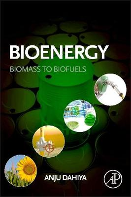 Bioenergy: Biomass to Biofuels (Paperback)