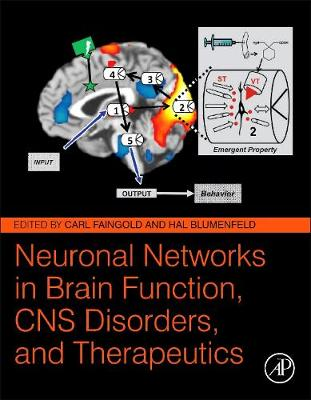 Neuronal Networks in Brain Function, CNS Disorders, and Therapeutics (Hardback)