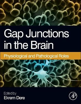 Gap Junctions in the Brain: Physiological and Pathological Roles (Hardback)