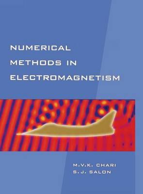 Numerical Methods in Electromagnetism - Electromagnetism (Hardback)
