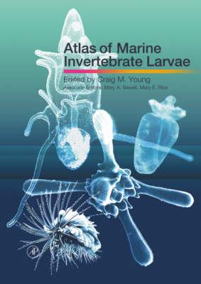 Atlas of Marine Invertebrate Larvae (Hardback)