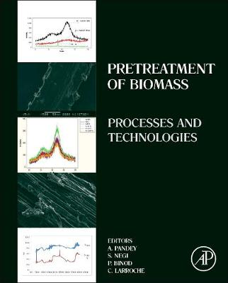 Pretreatment of Biomass: Processes and Technologies (Hardback)