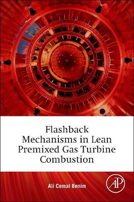 Flashback Mechanisms in Lean Premixed Gas Turbine Combustion (Paperback)