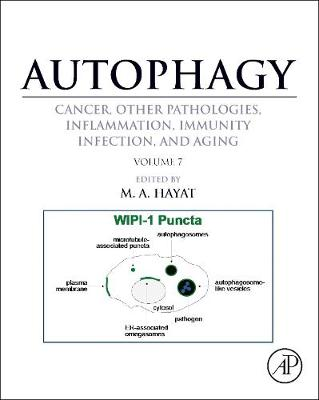 Autophagy: Cancer, Other Pathologies, Inflammation, Immunity, Infection, and Aging: Volume 7Role of Autophagy in Therapeutic Applications (Hardback)