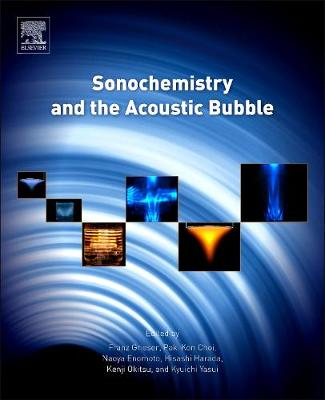 Sonochemistry and the Acoustic Bubble (Hardback)