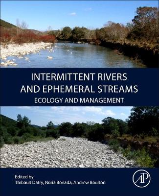 Intermittent Rivers and Ephemeral Streams: Ecology and Management (Paperback)