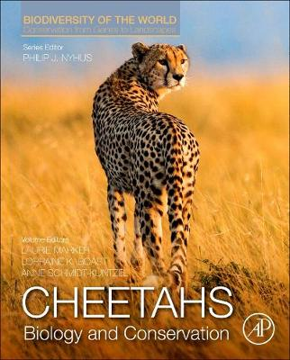 Cheetahs: Biology and Conservation: Biodiversity of the World: Conservation from Genes to Landscapes - Biodiversity of the World: Conservation from Genes to Landscapes (Hardback)