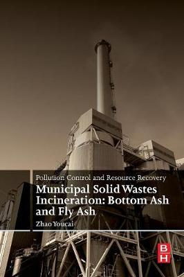 Pollution Control and Resource Recovery: Municipal Solid Wastes Incineration: Bottom Ash and Fly Ash (Paperback)