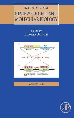 International Review of Cell and Molecular Biology: Volume 330 - International Review of Cell and Molecular Biology (Hardback)