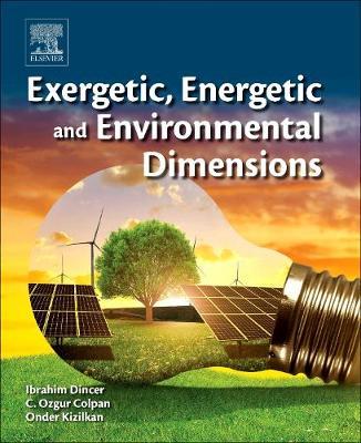 Exergetic, Energetic and Environmental Dimensions (Hardback)