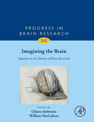 Imagining the Brain: Episodes in the History of Brain Research: Volume 243 - Progress in Brain Research (Hardback)