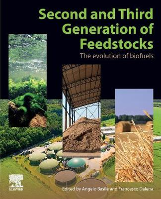 2nd and 3rd Generation of Feedstocks: The Evolution of Biofuels (Paperback)