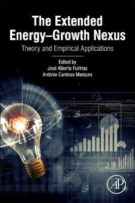 The Extended Energy-Growth Nexus: Theory and Empirical Applications (Paperback)