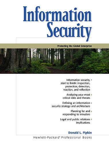 Information Security: Protecting the Global Enterprise (Paperback)