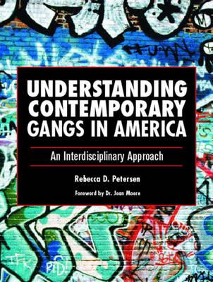 Understanding Contemporary Gangs in America: An Interdisciplinary Approach (Paperback)
