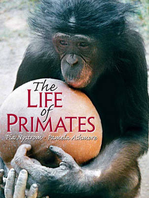 The Life of Primates: How Much Like Us? (Paperback)