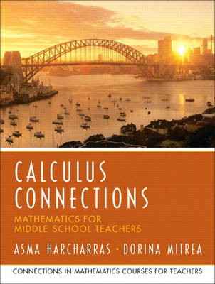 Calculus Connections (Paperback)