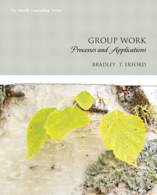 Group Work: Processes and Applications (Hardback)