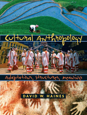 Cultural Anthropology: Adaptations, Structures, Meanings (Paperback)
