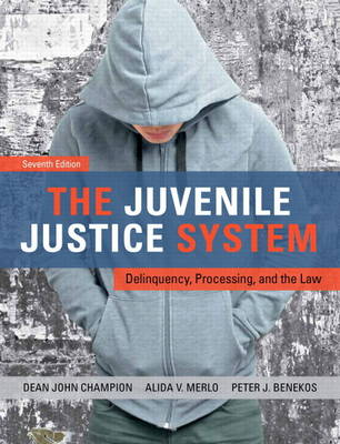 The Juvenile Justice System: Delinquency, Processing, and the Law (Hardback)