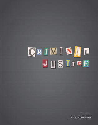 Criminal Justice: A Critical-Thinking Approach (Paperback)