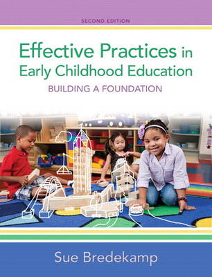 Effective Practices in Early Childhood Education: Building a Foundation (Hardback)