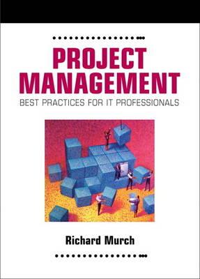 Project Management: Best Practices for IT Professionals (Paperback)