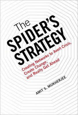 The Spider's Strategy: Creating Networks to Avert Crisis, Create Change, and Really Get Ahead (paperback) (Paperback)