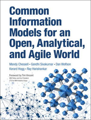 Common Information Models for an Open, Analytical, and Agile World (Hardback)