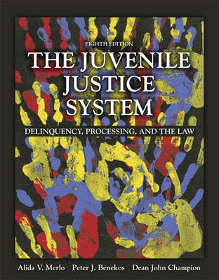 The Juvenile Justice System: Delinquency, Processing, and the Law (Paperback)