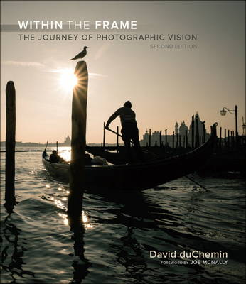 Within the Frame: The Journey of Photographic Vision (Paperback)