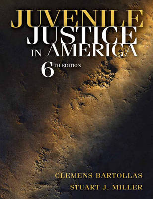 Juvenile Justice in America (Hardback)